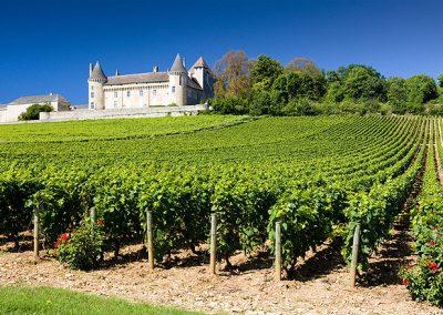 35. France – Bourgogne, près de Dijon, Endocrinologie